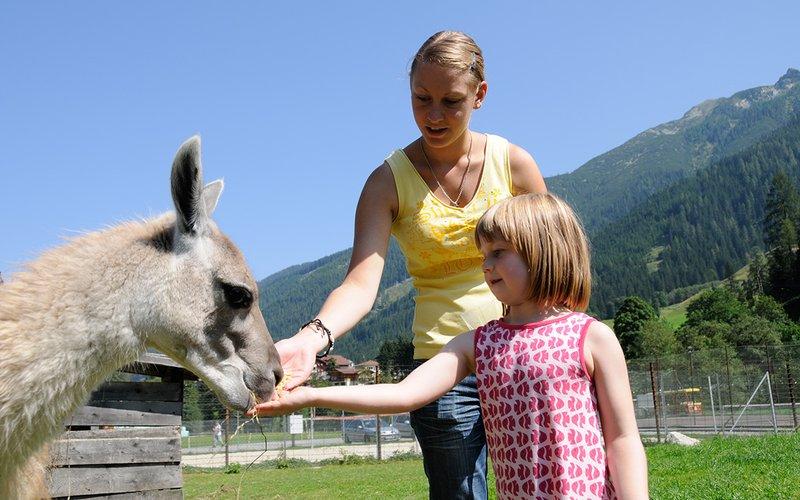 Wild & Freizeitpark Untertauern